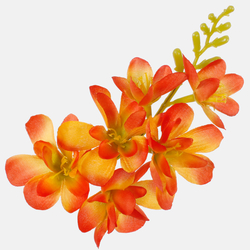 Satin freesia W677